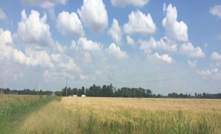 The Reed Farm thumbnail photo