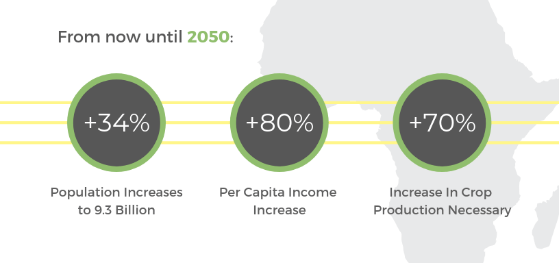 From now until 2050, there will need to be a 70% increase in food production to feed the planet's population
