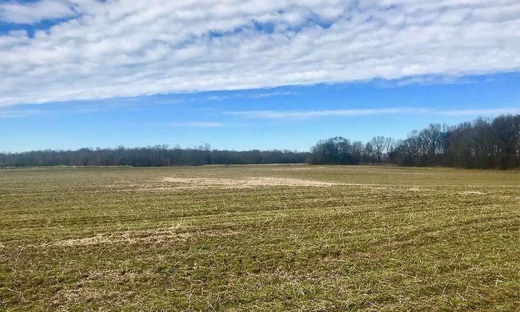 Arkansas Row Crop Farm