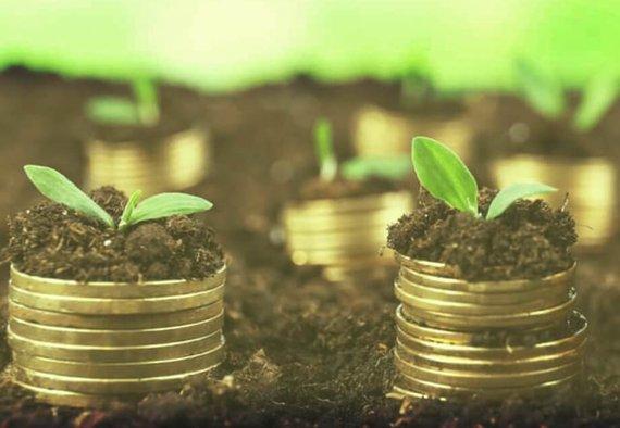 https://media.acretrader.com/news/farmland-versus-gold.jpg