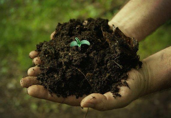 https://media.acretrader.com/news/good-soil-versus-dirt.jpg