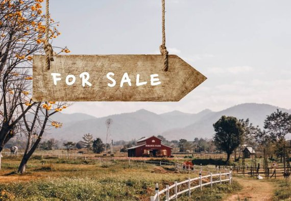 3 Reasons Why Owners Sell Farmland | AcreTrader