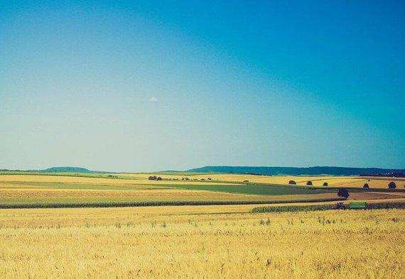 https://media.acretrader.com/news/us-farmland-best-in-the-world.jpg